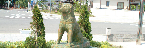 藤島の見どころのイメージ